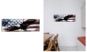 iCanvas  Bald American Eagleus Flag C by iCanvas Wrapped Canvas Print Collection