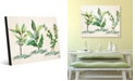 Creative Gallery Herb Trio in Green on Tan Acrylic Wall Art Print Collection