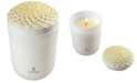 Lladro Echoes of Nature Tropical Blossoms Candle