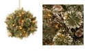 "National Tree Company National Tree 12"" Glittery Bristle Pine Kissing Ball with Pine Cones and 35 Warm White LED Battery Operated Lights with Timer"
