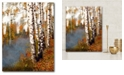 """Courtside Market Birch Dream Gallery-Wrapped Canvas Wall Art - 16"""" x 20"""""""