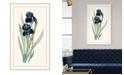 "Melissa Van Hise Redoute Iris I Framed Giclee Wall Art - 28"" x 46"" x 2"""