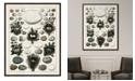 "Melissa Van Hise Aerie I Framed Giclee Wall Art - 36"" x 47"" x 2"""