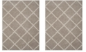 Safavieh New York Shag Light Gray and Ivory 4' X 6' Area Rug
