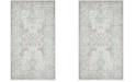 Safavieh Windsor Light Gray and Aqua 5' x 7' Area Rug