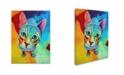 "Trademark Global Corina St. Martin 'Ace Cat' Canvas Art - 32"" x 24"" x 2"""