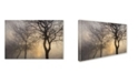 "Trademark Global Cora Niele 'Mystic Trees With Owl' Canvas Art - 47"" x 30"" x 2"""