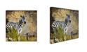 "Trademark Global Color Bakery 'Taste Of Africa IV' Canvas Art - 24"" x 24"""