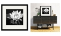 """Courtside Market Waterlily Flower I 16"""" x 16"""" Framed and Matted Art"""
