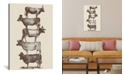"""iCanvas Cow Cow Nuts by Florent Bodart Wrapped Canvas Print - 40"""" x 26"""""""