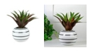 Northlight Artificial Potted Aloe Plant