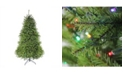 Northlight 6.5' Pre-Lit Northern Pine Full Artificial Christmas Tree - Multi-Color LED Lights