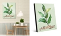 """Creative Gallery Watercolor Bay Leaves on Green 24"""" x 36"""" Acrylic Wall Art Print"""