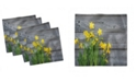 """Ambesonne Daffodil Bouquet Set of 4 Napkins, 12"""" x 12"""""""