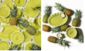 Coton Colors Pineapple Collection
