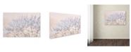 "Trademark Global Cora Niele 'Dandelion Dew II' Canvas Art - 19"" x 12"" x 2"""