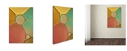 """Trademark Global Cora Niele 'Red Yellow and Green Drops' Canvas Art - 19"""" x 12"""" x 2"""""""