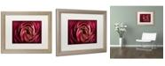 "Trademark Global Cora Niele 'Glowing Ruby Red Ranunculus' Matted Framed Art - 20"" x 16"" x 0.5"""