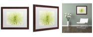 "Trademark Global Cora Niele 'Lime Light Spider Mum' Matted Framed Art - 20"" x 16"" x 0.5"""