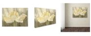 "Trademark Global Cora Niele 'Sunshine Poppy' Canvas Art - 32"" x 24"" x 2"""