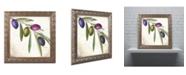 "Trademark Global Color Bakery 'Olive Branch IV' Ornate Framed Art - 16"" x 0.5"" x 16"""