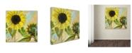"Trademark Global Color Bakery 'Soleil I' Canvas Art - 18"" x 2"" x 18"""