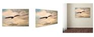 "Trademark Global Jai Johnson 'High Flyer Bald Eagle' Canvas Art - 47"" x 30"" x 2"""