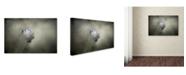 "Trademark Global Jai Johnson 'Little Tufted Titmouse' Canvas Art - 32"" x 22"" x 2"""