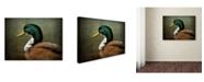 "Trademark Global Jai Johnson 'Mallard Duck Portrait' Canvas Art - 19"" x 14"" x 2"""