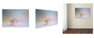 "Trademark Global Jai Johnson 'Beach Memories 3' Canvas Art - 24"" x 16"" x 2"""