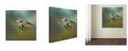 "Trademark Global Jai Johnson 'Hummingbird In Spring Storm' Canvas Art - 35"" x 35"" x 2"""