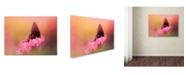 "Trademark Global Jai Johnson 'Napping In The Azaleas' Canvas Art - 24"" x 18"" x 2"""