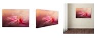 "Trademark Global Jai Johnson 'Rain Diamonds' Canvas Art - 19"" x 12"" x 2"""