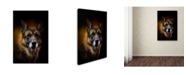 "Trademark Global Jai Johnson 'Shepherd Glow' Canvas Art - 47"" x 30"" x 2"""