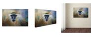 "Trademark Global Jai Johnson 'African Grivet Monkey' Canvas Art - 24"" x 16"" x 2"""
