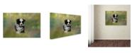 "Trademark Global Jai Johnson 'Puppyhood 1' Canvas Art - 19"" x 12"" x 2"""