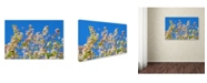 "Trademark Global Cora Niele 'Spring Apple Blossom' Canvas Art - 47"" x 30"" x 2"""