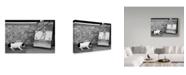 "Trademark Global Deborah Gugeri 'Definitely No' Canvas Art - 47"" x 2"" x 30"""