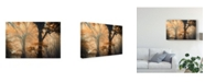 "Trademark Global Ildiko Neer 'Reverse And Forward' Canvas Art - 24"" x 2"" x 16"""