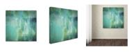 """Trademark Global Color Bakery 'Aqua Circumstance' Canvas Art - 35"""" x 35"""" x 2"""""""
