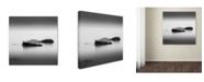 "Trademark Global Dave MacVicar 'Simple' Canvas Art - 18"" x 18"" x 2"""