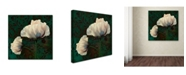 """Trademark Global Tina Lavoie 'Poppies In Verdigris And Rust' Canvas Art - 35"""" x 35"""" x 2"""""""