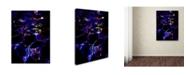 """Trademark Global MusicDreamerArt 'Magic Water' Canvas Art - 19"""" x 14"""" x 2"""""""