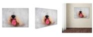 "Trademark Global Jai Johnson 'The Face of The Sheepdog' Canvas Art - 24"" x 18"" x 2"""