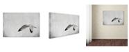 "Trademark Global Jai Johnson 'Winters Return' Canvas Art - 24"" x 16"" x 2"""