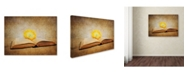 "Trademark Global Jai Johnson 'The Joy Of Reading' Canvas Art - 32"" x 24"" x 2"""