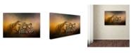 "Trademark Global Jai Johnson 'The Tiger Awakens' Canvas Art - 24"" x 16"" x 2"""