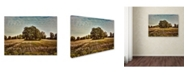 "Trademark Global Jai Johnson 'Trees In The Cotton Field' Canvas Art - 32"" x 24"" x 2"""