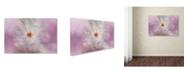 "Trademark Global Jai Johnson 'White Peony 4' Canvas Art - 19"" x 12"" x 2"""