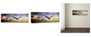 "Trademark Global Jai Johnson 'Sunset Flight' Canvas Art - 47"" x 16"" x 2"""